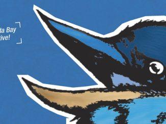 sustainability-seabirds