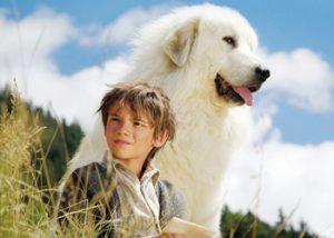 movies-belle-sebastian
